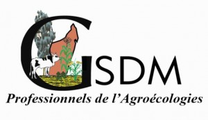 LOGO GSDM copie
