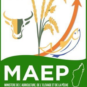 logo MAEP